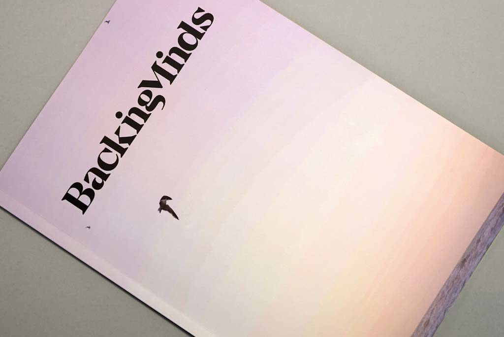 Broschyr till Backing Minds - AMO-Tryck, Ditt tryckeri i Stockholm, Solna